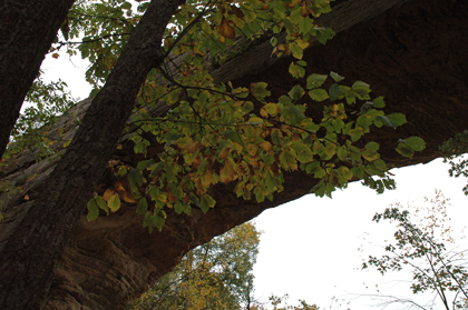 underbridge.jpg